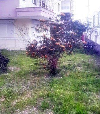 properties for sale in antalya turkey20150311_180337